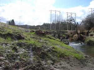 Skookum Creek Bank Restoration
