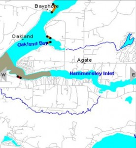Figure 2.  Green And Red Shaded Areas Indicate Closure Areas For Oakland Bay and Hammersley Inlet www.doh.wa.gov