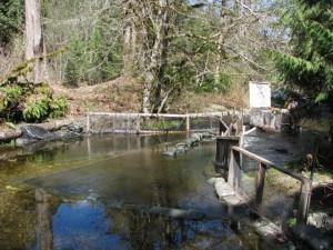 Schumacher Creek Smolt Trap