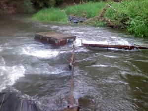 Mill Creek May 7th, 2009