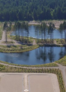 This photo is from the LOTT reclaimed water website. http://www.lottcleanwater.org/reclaimed.htm